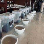 Variety of Coffee Tasting