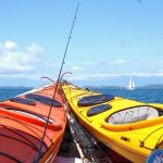 island trip, gulf of chriqui national park, golfo de chiriqui, snorkeling, whales, panama