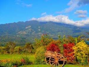 Volcan Baru, Boquete, Panama,