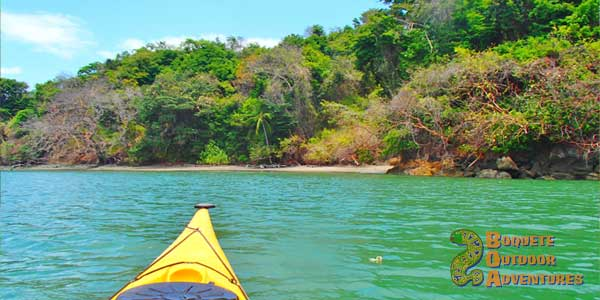 sea kayaking in panama, isla bolanos, golfo de chiriqui national park, panama, boquete, gulf of chiriqui national marine park, island trip, howler monkey, whale watching