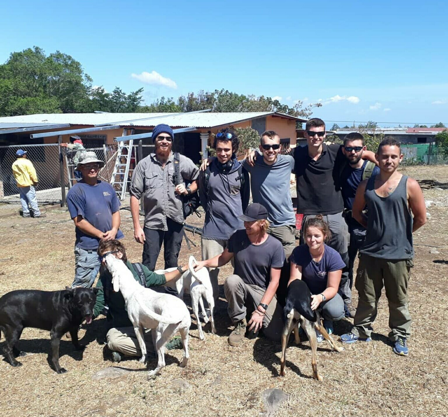 Dog Camp Volunteer Project